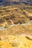 Каньон Colca, Перу, Южная Америка Incas для того чтобы построить террасы сельского хозяйства с прудом и скалой Один из самых глуб стоковые фото