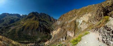 Каньон Colca стоковое фото rf