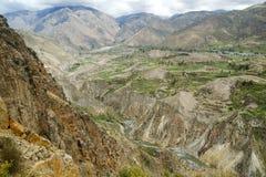 Каньон de Colca, Перу Стоковые Фотографии RF