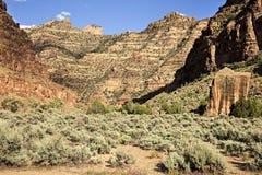 Каньон Desolation стоковое фото