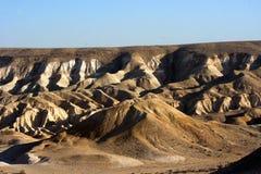 Каньон Ein Avdat в пустыня Негев Израиль Стоковые Изображения RF