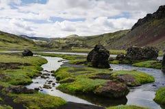 Каньон Eldgja, южная Исландия стоковая фотография