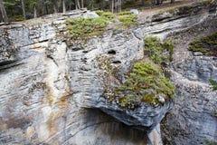 Каньон Maligne, национальный парк яшмы, Альберта, Канада стоковые изображения rf