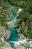каньон montenegro tara Стоковое Изображение