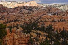 Каньон Pronghorn Bryce, Юта Стоковая Фотография RF