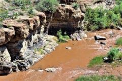 Каньон Salt River, в пределах белой индейской резервации апаша горы, Аризона, Соединенные Штаты стоковое изображение rf