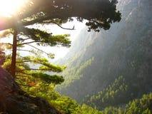 Каньон Samaria Стоковая Фотография RF