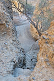 Каньон Sesriem около Sossusvlei Намибия Стоковое фото RF