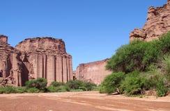 Каньон Talampaya красный и зеленые treees Стоковые Изображения RF