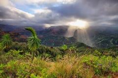 Каньон Waimea в Кауаи, островах Гаваи. Стоковые Фото