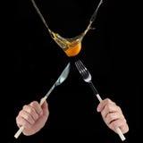 Капание яичного желтка внутри к чашке Стоковое фото RF