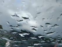 Капельки дождя Стоковые Фото