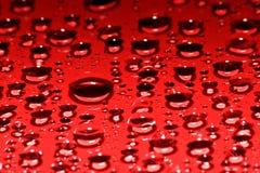 капельки красные Стоковое Изображение RF