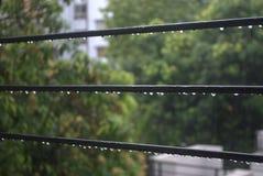 Капельки дождя Стоковая Фотография