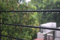 Капельки дождя Стоковое Изображение