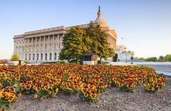 Капитолий США строя весну DC Вашингтона Стоковые Фото