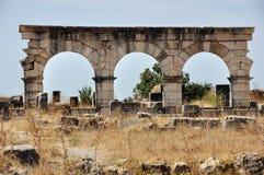 Капитолий Volubilis, Марокко Стоковое Фото