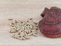 Капсула lucidum Ganoderma - гриб zhi Ling Стоковое фото RF