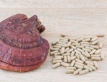 Капсула lucidum Ganoderma - гриб zhi Ling Стоковые Изображения