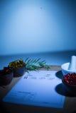 Капсулы, миномет, пестик и пусковая площадка рецепта Стоковые Изображения