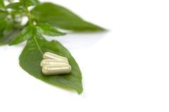 Капсулы фитотерапии с травяными лист на белой предпосылке Стоковое Изображение