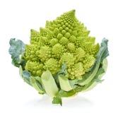 Капуста зеленого брокколи цветной капусты Romanesco (или Romanesco) Стоковые Изображения RF