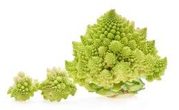 Капуста зеленого брокколи цветной капусты Romanesco (или Romanesco) Стоковое фото RF