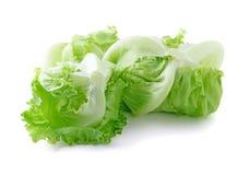 Капуста салата айсберга Стоковая Фотография RF