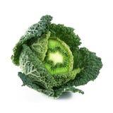 Капуст-киви плодоовощ Ibrid vegetable Стоковое Изображение
