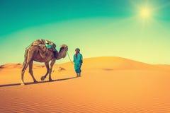 Караван верблюда идя через песчанные дюны в пустыне Сахары, Стоковое Фото
