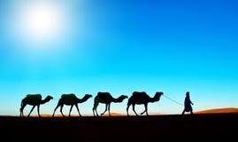 Караван верблюда на deser Сахары Стоковое Изображение RF