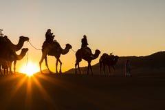 Караван верблюда при люди идя через песчанные дюны в Sa Стоковое Изображение RF
