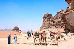 Караван верблюдов в пустыне рома вадей, Джордан стоковое изображение