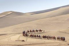 Караван верблюда в пустыне Гоби в Дуньхуане Стоковые Изображения