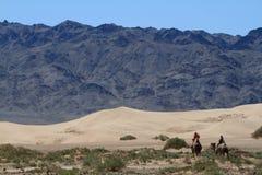 Караван верблюда в пустыне Гоби Стоковое Изображение RF