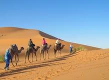 Караван верблюда туристский в пустыне Стоковые Изображения RF