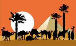 Караван верблюда Стоковое Фото