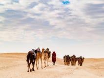 Караван в пустыне Сахары на заходе солнца двигает прочь к горизонту Стоковые Изображения RF