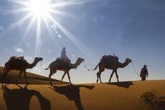 Караван пустыни Стоковое Изображение RF
