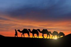 Караван пустыни Стоковое Изображение