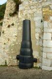 карамболь старый Стоковая Фотография RF