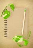 карандаш тетради рециркулирует деревянное Стоковое фото RF