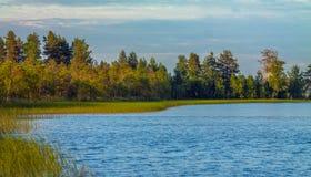 Карельское озеро с опушкой Стоковые Изображения RF