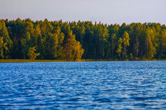 Карельское озеро с опушкой Стоковая Фотография