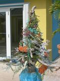 Карибская рождественская елка Стоковые Фото
