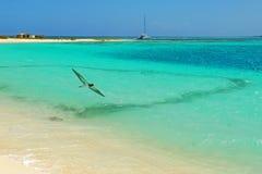 карибские острова Стоковое Изображение RF