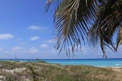 Карибские флюиды стоковая фотография rf