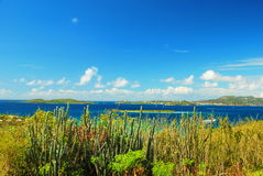 Карибский взгляд, St. John, остров девственницы США Стоковое фото RF