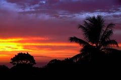 Карибский заход солнца над Sosua Стоковое фото RF