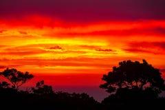 Карибский заход солнца над Sosua Стоковое Фото